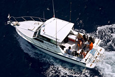 Cozumel dive boat